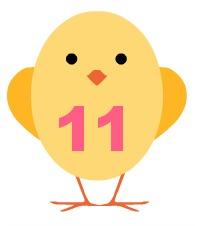 chick11