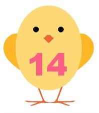 chick14