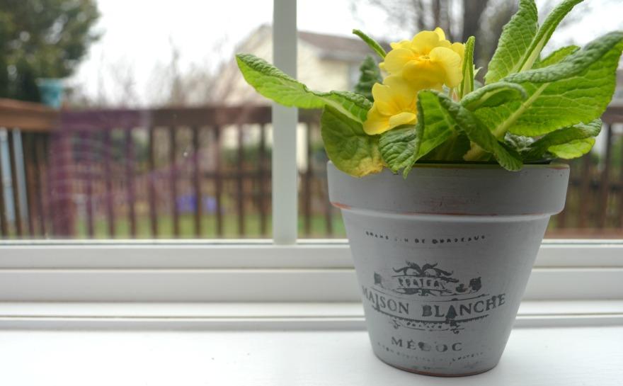 Stenciled Vintage Flower Pot
