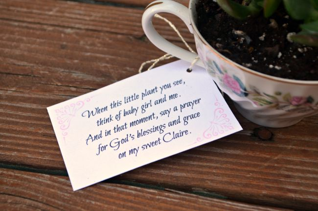Baby Shower Favors Teacup Succulents Amy Latta Creations