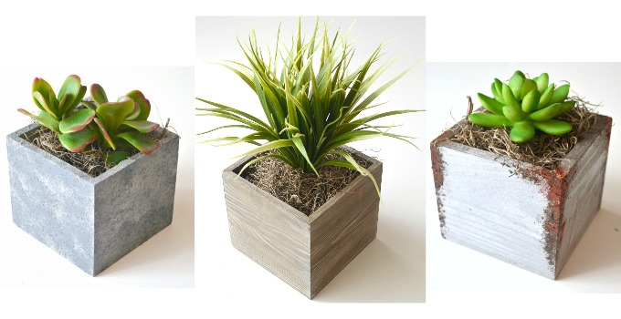Succulent Planters with FolkArt Painted Finishes