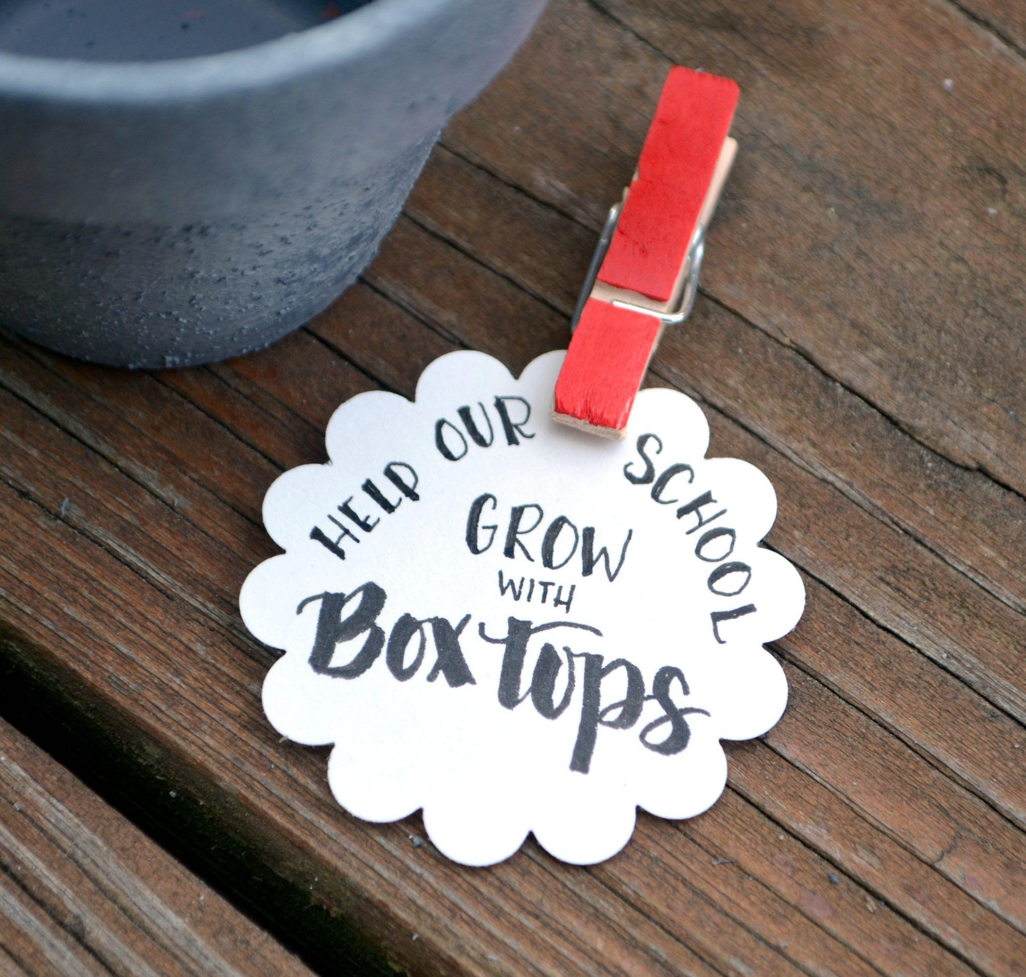 boxtoppot4 - Copy (2)